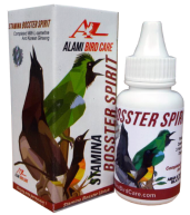 booster spirit